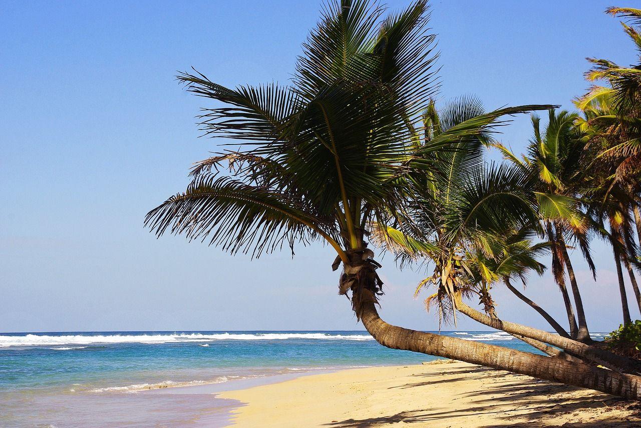 Ventajas de los viajes a Punta Cana en todo incluido para fin de curso