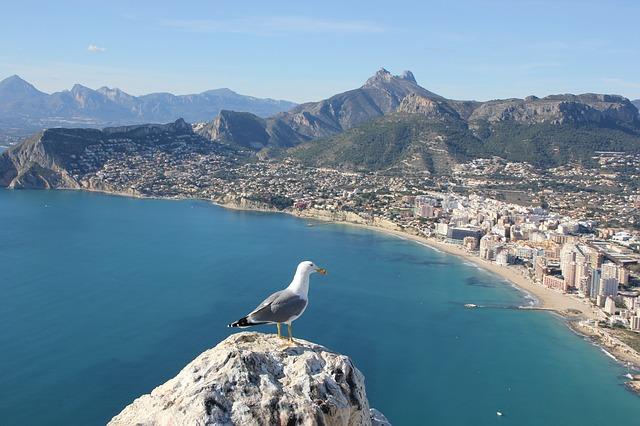 Viaje de fin de curso a Alicante, consejos y actividades