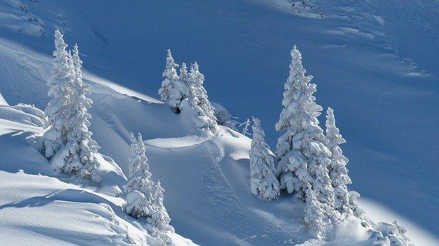 Organizar un viaje de estudios a la nieve en invierno